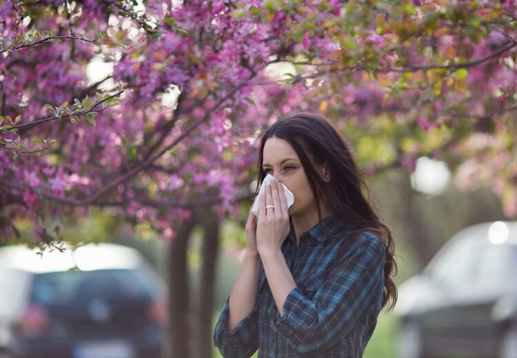 Les allergies du printemps : d'où viennent-elles et comment les combattre ? - Heyme